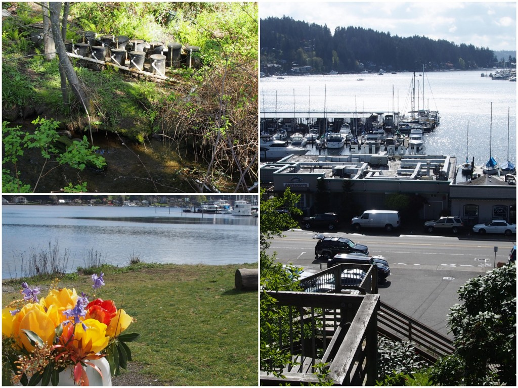 Clockwise from the top left: Salmon hatchery at Donkey Creek; View from Finholm View Climb; memorial flowers left by mystery man for his wife at Austin Estuary.