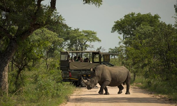 nomad-tours-south-africa