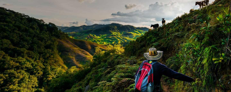 travel-film-2015-large