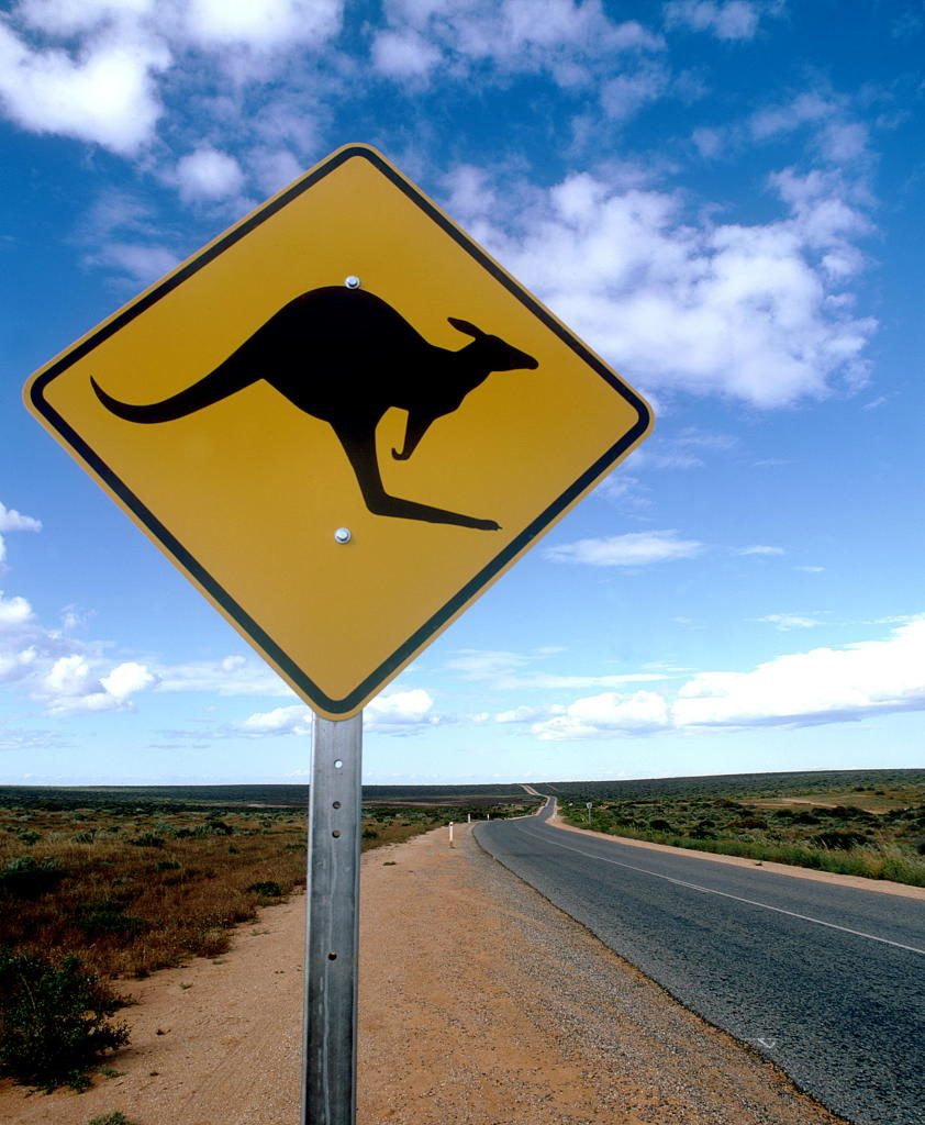 Kangaroo_sign-842x1024