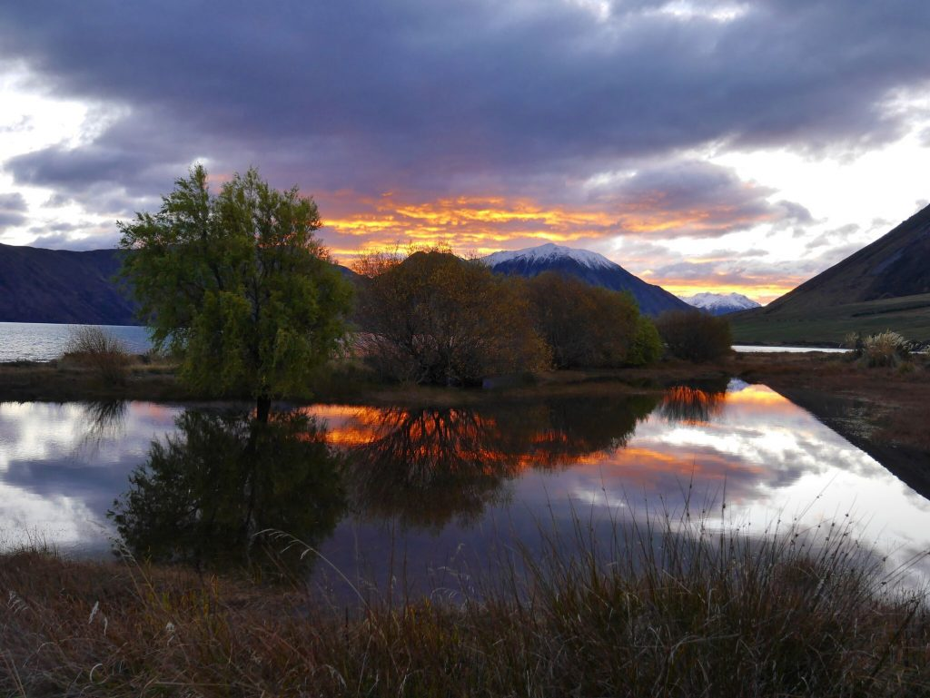 new-zealand-3_anderson